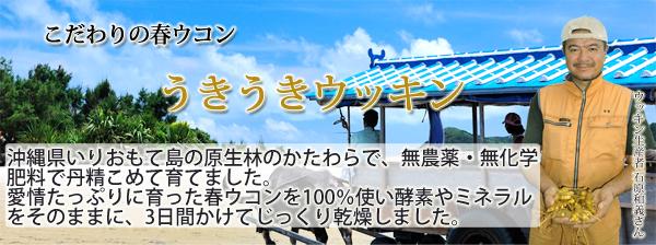 うきうきウッキン10