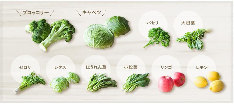 8種類の野菜と2種の果物
